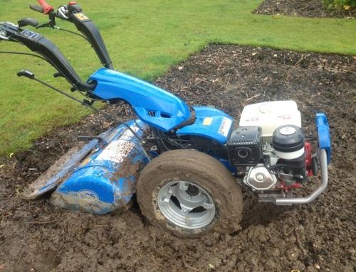 Sussex Garden Work 2