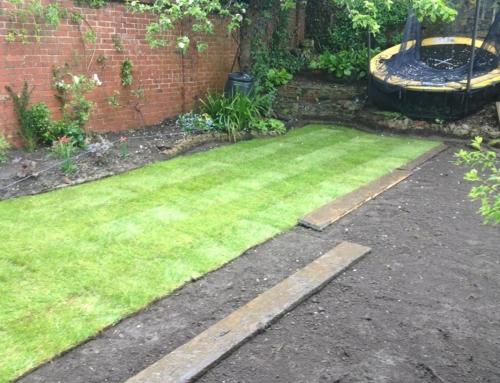 Sussex Garden Work 3