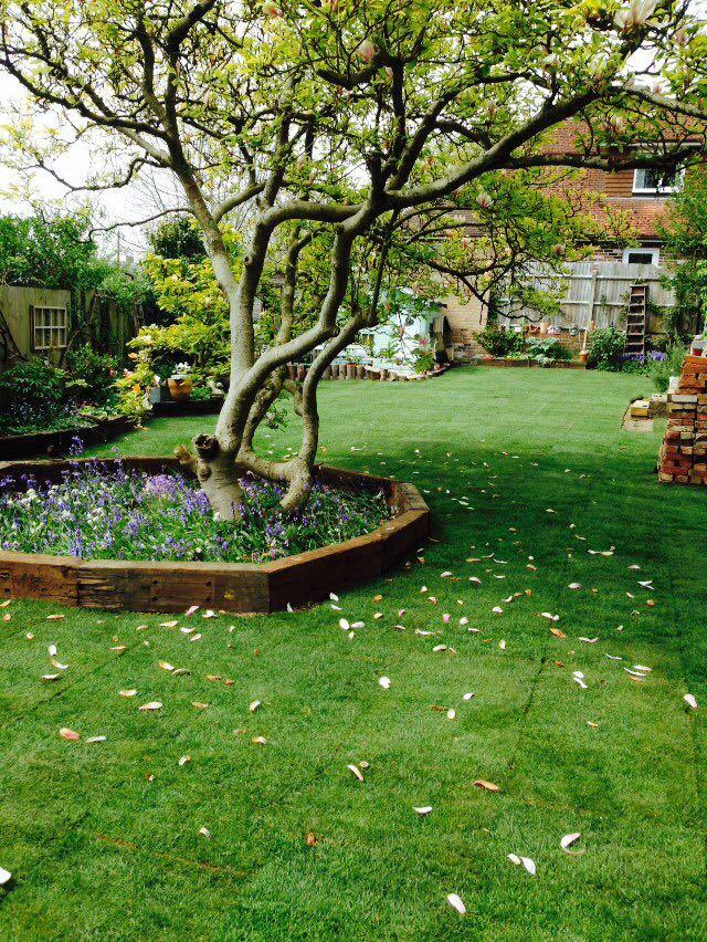 Sussex Garden Work 8 Sussex Garden Maintenance